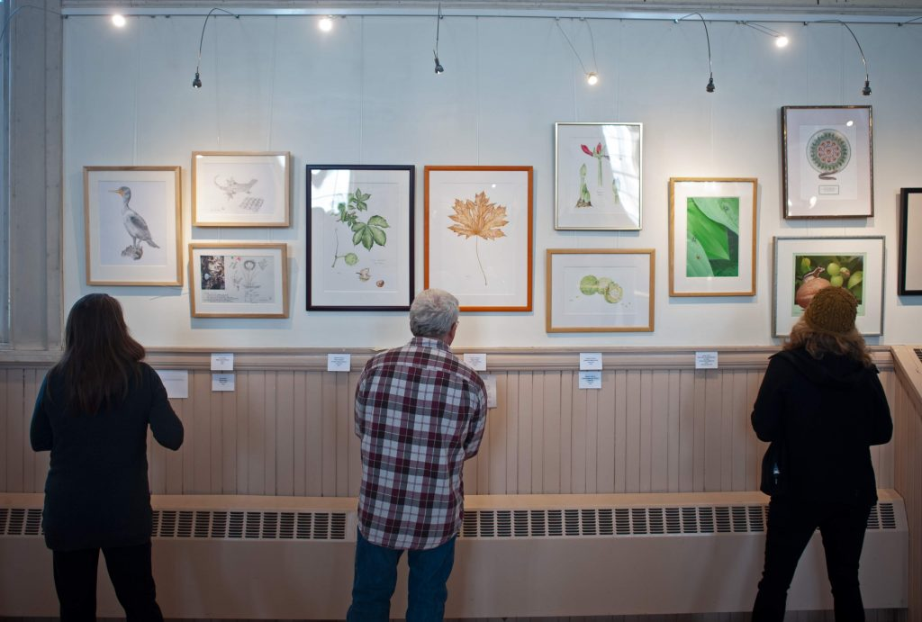Art and Illustration of the Natural Sort at the Trumansburg Conservatory of Fine Arts